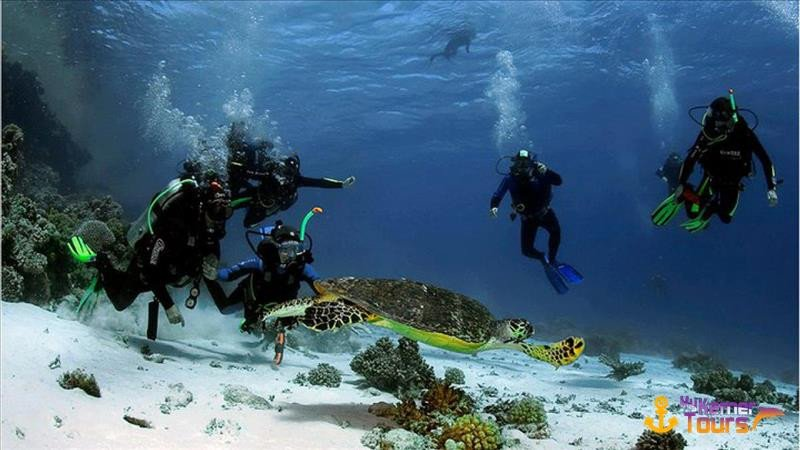 Diving in Kemer